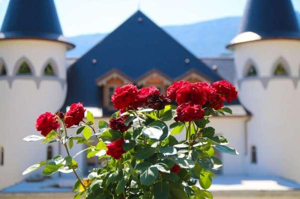 Fleurs devant le Château de Tresserve
